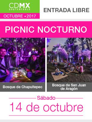 PICNIC_BOSQUES (6).png