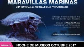 """Presenta Sedema nueva exposición temporal """"Maravillas Marinas"""", en el Museo de Historia Natural"""