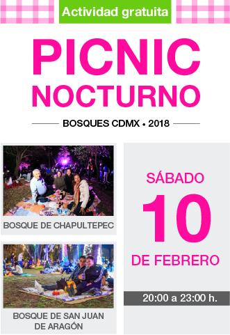 picnic-febrero.png