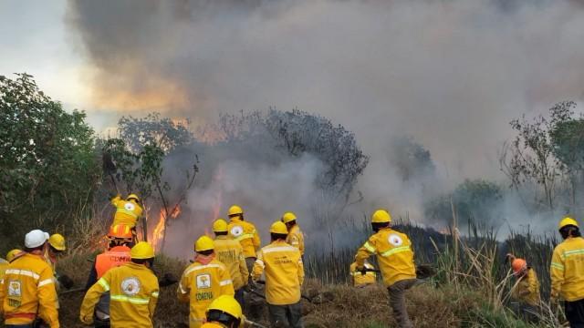Resultado de imagen para incendios en magdalena contreras
