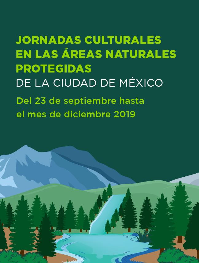 jornadas culturales-04.png