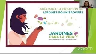 """Publica Sedema """"Guía para la creación de jardines polinizadores"""""""