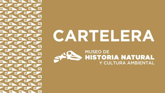 Museo de Historia Natural y Cultura Ambiental 🦖