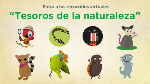 Tesoros de la Naturaleza 🌳